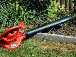 how and not to use a leaf blower best grass for central florida seed shade time a shady stairway best grass for central florida bahia