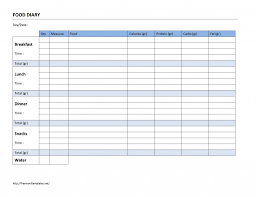 Food Diary Template Template Business