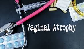 What is Vaginal Atrophy: Causes, Symptoms and Treatments of the ...