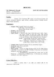RESUME Mr. Nikhilesh D. Wasnik DOT NET DEVELOPER Mob No.