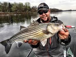 Fresh water fishing for stripper bass