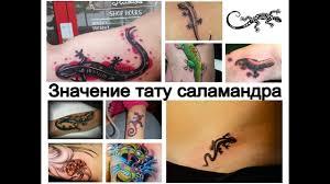 значение тату саламандра информация и фото примеры рисунков для сайта Tattoo Photoru