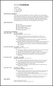 Data Entry Resume Extraordinary Free Contemporary Data Entry Resume Templates ResumeNow