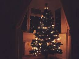 christmas tree tumblr photography. Delighful Christmas Stephanienicholexoxo U201cChristmas On We Heart It Throughout Christmas Tree Tumblr Photography I