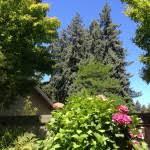 the garden grill in guerneville ca