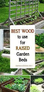 raised beds raised garden