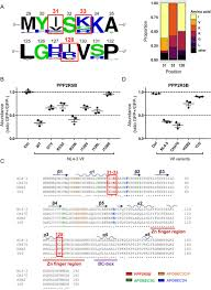 Antagonism Of Pp2a Is An Independent And Conserved Function