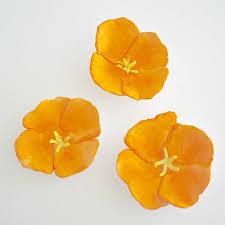 Paper Flower Crafts For Kindergarten 20 Gorgeous Flower Crafts Crafts For Kids