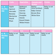6 Month Diet Chart 4 6 Month Food Chart Chart For Baby Food Baby Recipes