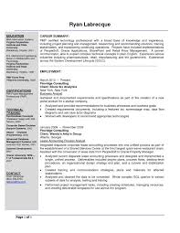 Business Analyst Sample Resume Sample Resume Of A Business Analyst Project Manager Archives 13