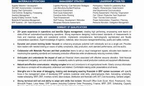 Sample Resume For Procurement Manager Officer Job Chief Templates ...