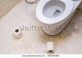 toilet seat top view. Top View Toilet Seat Decoration In Bathroom Interior. White Bowl, A Roll Of