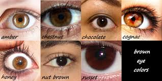 Iris Color Chart