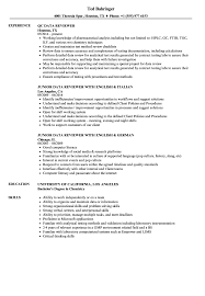 Computer Literacy Skills Examples For Resume Data Reviewer Resume Samples Velvet Jobs 54