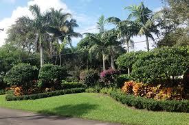 Florida Landscape Design Photos Florida Landscaping Ideas For Privacy Home Landscaping Ideas