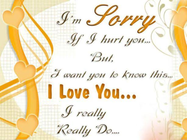 sorry shayari in hindi for wife