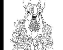 Small Picture Art By Eddy Coloring Books and Pet Portraits by ArtByEddy on Etsy