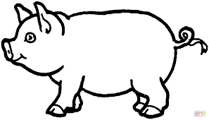 Small Picture Swine coloring page Free Printable Coloring Pages