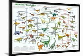 72 Hand Picked Smithsonian Chart Of Animal Evolution