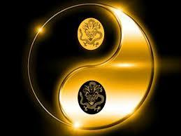 Kung Fu Of Golden Dragon Martial Arts School Los Angeles