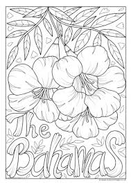 flower colouring pictures. Brilliant Colouring Bahamas National Flower Colouring Page For Pictures L