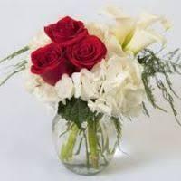 royers flowers shillington thin