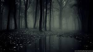 Dark Forest 4K (Page 3) - Line.17QQ.com