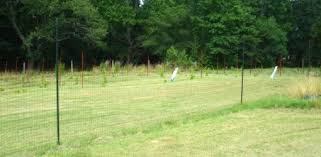 a deer proof fence around your yard