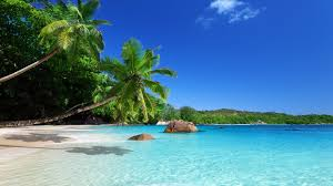 Two coconut trees, landscape, beach ...