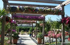 pergola design ideas for alleys in your garden