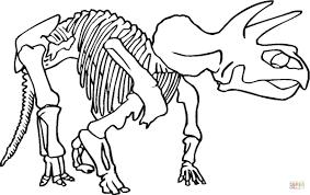 Coloriage Squelette De Dinosaure Coloriages Imprimer Gratuits