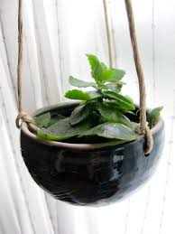 ... Planters, Indoor Decorative Plant Pots Gorgeus Black Hanging Pot With  Green Plant Design: extraordinary ...