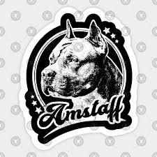 Amstaff Dog Retro