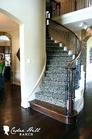 animal print rug runners zebra runner rug charming animal print runner rug coffee carpet for stairs