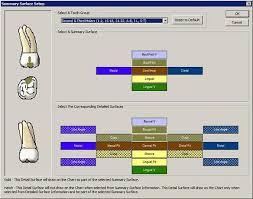 Surfaces Of The Teeth Chart Customizing Detailed Surface Information