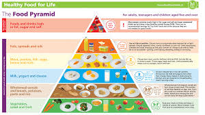 follow healthy eating guidelines familiarise yourself with the food pyramid and other reliable sources of information from qualified professionals