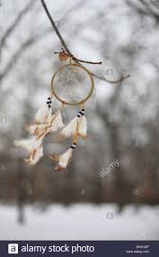Tree Branch Dream Catcher A Native American Dream Catcher Hanging From A Tree Branch Stock 34