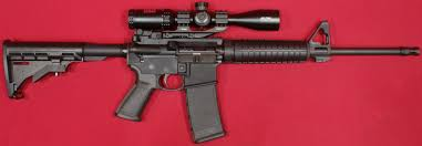 ruger ar 556. ruger ar-556 review: with bushnell ar optics scope ar 556 f