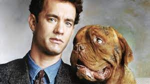 12 Fun Facts About Turner & Hooch ...