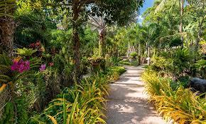 botanical gardens botanical gardens