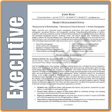 Executive Resume Writing Best 6114 Executive Resume Writer 24 Update Retargeted Package