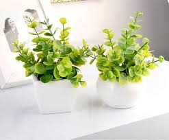 office desk plant small plant for office desk formidable for home design styles interior ideas with