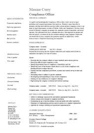Compliance Officer Sample Resume Fascinating Construction Job Career Objective Worker Resume Cute Project