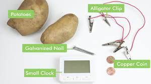 Potato Powered Light Bulb Project How To Create A Potato Battery 13 Steps With Pictures