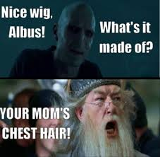 Image of: Image Result For Harry Potter Memes Voldemort Yo Mama Pinterest Image Result For Harry Potter Memes Voldemort Yo Mama Harry Potter