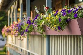 Spring Green General Store: Summertime flower boxes on the front porch.