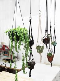 love the look of grouped hanging plants indoors