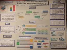 Mircore High School Research Conference Poster Examples