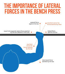 Best 25 Bench Press Ideas On Pinterest  Pectoral Exercises How To Find Your Max Bench Press