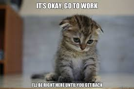 Sad Kitten memes | quickmeme via Relatably.com